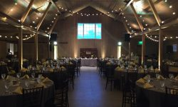 Denver, Fort Collins, and Westminster Wedding DJ service